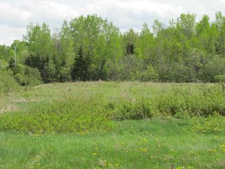 Photo 9: Lot 3 West Halls Harbour Road in Halls Harbour: 404-Kings County Vacant Land for sale (Annapolis Valley)  : MLS®# 201911037