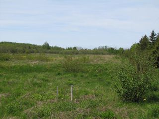 Photo 8: Lot 3 West Halls Harbour Road in Halls Harbour: 404-Kings County Vacant Land for sale (Annapolis Valley)  : MLS®# 201911037