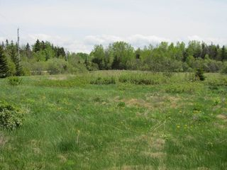 Photo 4: Lot 3 West Halls Harbour Road in Halls Harbour: 404-Kings County Vacant Land for sale (Annapolis Valley)  : MLS®# 201911037