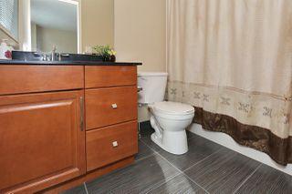 Photo 15: 2406 34A Avenue in Edmonton: Zone 30 House for sale : MLS®# E4157695