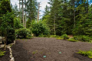 Photo 13: 5775 NAYLOR Road in Sechelt: Sechelt District House for sale (Sunshine Coast)  : MLS®# R2376524
