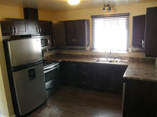 Photo 5: 1234 62 Street in Edmonton: Zone 29 House for sale : MLS®# E4163748
