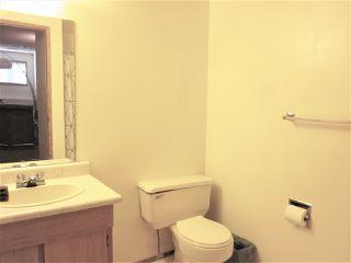 Photo 14: 7312 189 Street in Edmonton: Zone 20 House for sale : MLS®# E4169112