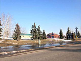 Photo 26: 7312 189 Street in Edmonton: Zone 20 House for sale : MLS®# E4169112