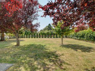 Photo 19: 510 Richmond Avenue in VICTORIA: Vi Fairfield East Single Family Detached for sale (Victoria)  : MLS®# 417112