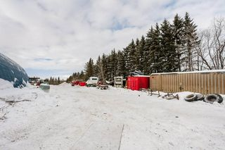 Photo 31: 50356 RGE RD 235: Rural Leduc County House for sale : MLS®# E4187731