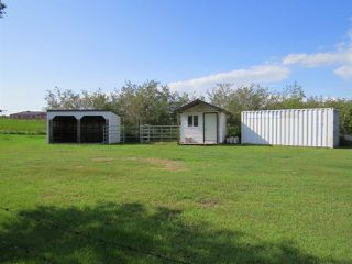 Photo 12: 4426 47 Street: Hardisty House for sale : MLS®# E4210191