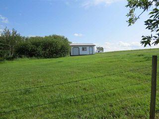 Photo 10: 4426 47 Street: Hardisty House for sale : MLS®# E4210191