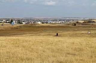 Main Photo: 8 Street Rural Street: Okotoks Land for sale : MLS®# A1043605
