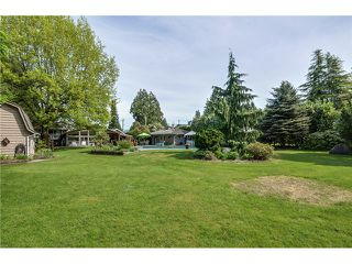 Photo 18: 21466 RIVER Road in Maple Ridge: West Central House for sale : MLS®# V1063864