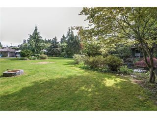 Photo 16: 21466 RIVER Road in Maple Ridge: West Central House for sale : MLS®# V1063864