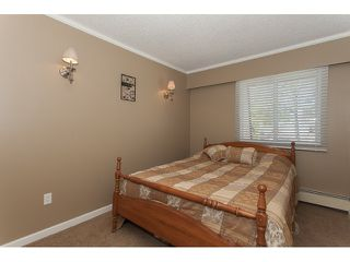 "Photo 17: 356 2821 TIMS Street in Abbotsford: Abbotsford West Condo for sale in ""Parkview Estates"" : MLS®# R2058809"