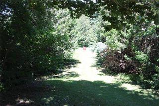 Photo 11: B1435 County Road 50 Road in Brock: Rural Brock House (Sidesplit 3) for sale : MLS®# N3543643