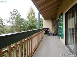 Photo 16: 405 3277 Quadra St in VICTORIA: SE Maplewood Condo for sale (Saanich East)  : MLS®# 755270