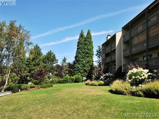 Photo 19: 405 3277 Quadra St in VICTORIA: SE Maplewood Condo for sale (Saanich East)  : MLS®# 755270