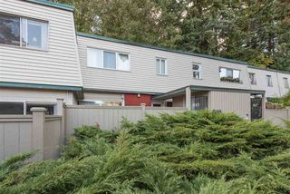 "Photo 16: 815 WESTVIEW Crescent in North Vancouver: Upper Lonsdale Townhouse for sale in ""Cypress Gardens"" : MLS®# R2214681"