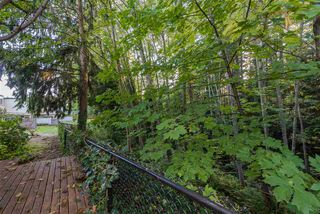 "Photo 19: 815 WESTVIEW Crescent in North Vancouver: Upper Lonsdale Townhouse for sale in ""Cypress Gardens"" : MLS®# R2214681"