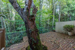"Photo 17: 815 WESTVIEW Crescent in North Vancouver: Upper Lonsdale Townhouse for sale in ""Cypress Gardens"" : MLS®# R2214681"