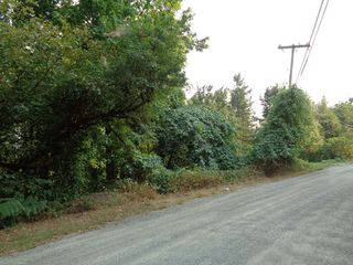 Photo 6: 22784 ROSS Road in Hope: Hope Center Land for sale : MLS®# R2230846