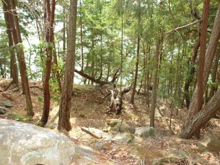 Photo 11: LT 106 Halibut Hill Rd in MUDGE ISLAND: Isl Mudge Island Land for sale (Islands)  : MLS®# 778215