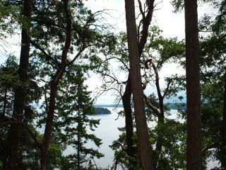 Photo 9: LT 106 Halibut Hill Rd in MUDGE ISLAND: Isl Mudge Island Land for sale (Islands)  : MLS®# 778215
