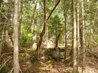 Photo 3: LT 106 Halibut Hill Rd in MUDGE ISLAND: Isl Mudge Island Land for sale (Islands)  : MLS®# 778215