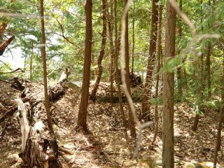 Photo 8: LT 106 Halibut Hill Rd in MUDGE ISLAND: Isl Mudge Island Land for sale (Islands)  : MLS®# 778215