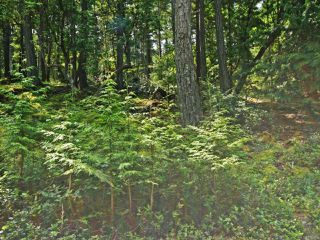 Photo 2: LT 106 Halibut Hill Rd in MUDGE ISLAND: Isl Mudge Island Land for sale (Islands)  : MLS®# 778215