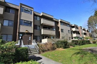 "Photo 17: 23 2444 WILSON Avenue in Port Coquitlam: Central Pt Coquitlam Condo for sale in ""ORCHARD"" : MLS®# R2247251"