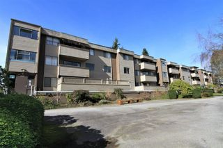 "Photo 15: 23 2444 WILSON Avenue in Port Coquitlam: Central Pt Coquitlam Condo for sale in ""ORCHARD"" : MLS®# R2247251"