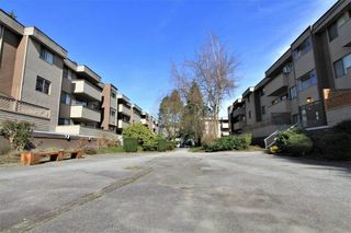 "Photo 16: 23 2444 WILSON Avenue in Port Coquitlam: Central Pt Coquitlam Condo for sale in ""ORCHARD"" : MLS®# R2247251"