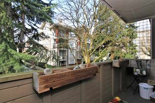"Photo 6: 23 2444 WILSON Avenue in Port Coquitlam: Central Pt Coquitlam Condo for sale in ""ORCHARD"" : MLS®# R2247251"