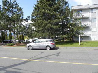 Photo 5: 306 175 CENTENNIAL DRIVE in COURTENAY: CV Courtenay East Condo for sale (Comox Valley)  : MLS®# 784460