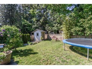 """Photo 19: 34563 STONELEIGH Avenue in Abbotsford: Abbotsford East House for sale in """"~The Quarry~"""" : MLS®# R2265795"""