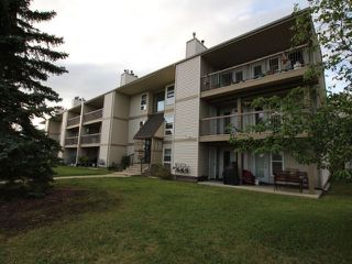 Main Photo: 304 10524 29 Avenue in Edmonton: Zone 16 Condo for sale : MLS®# E4122545