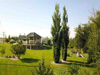 Photo 30: 15 BRIARWOOD Way: Stony Plain House for sale : MLS®# E4140737