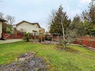 Photo 22: 4055 Saanich Rd in VICTORIA: SE High Quadra House for sale (Saanich East)  : MLS®# 806101
