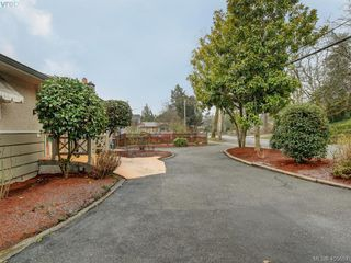 Photo 18: 4055 Saanich Rd in VICTORIA: SE High Quadra House for sale (Saanich East)  : MLS®# 806101
