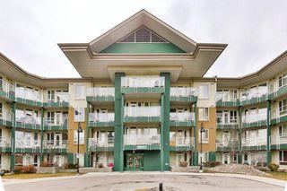 Photo 10: 313 3111 34 Avenue NW in Calgary: Varsity Apartment for sale : MLS®# C4237102
