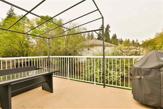 """Photo 20: 23881 114A Avenue in Maple Ridge: Cottonwood MR House for sale in """"TWIN BROOKS"""" : MLS®# R2362515"""