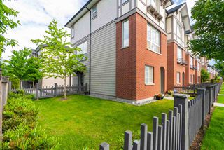 Main Photo: 77 7848 209 Street in Langley: Willoughby Heights Townhouse for sale : MLS®# R2372627