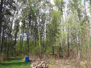 Photo 2: 53003 RANGE RD 271: Spruce Grove House for sale : MLS®# E4158720