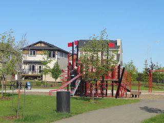 Photo 13: 9915 222 Street in Edmonton: Zone 58 House for sale : MLS®# E4179869
