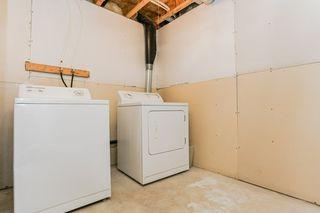 Photo 19: 4021 158 Avenue in Edmonton: Zone 03 House for sale : MLS®# E4187599