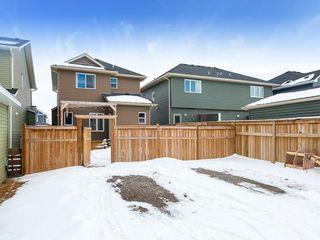 Photo 29: 74 WILLOW Drive: Cochrane Detached for sale : MLS®# C4286999