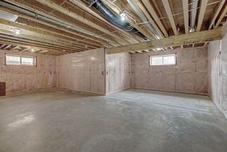 Photo 25: 6165 MAYNARD Crescent in Edmonton: Zone 14 House for sale : MLS®# E4206512