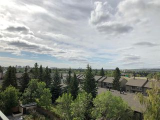 Photo 16: 605 5204 DALTON Drive NW in Calgary: Dalhousie Apartment for sale : MLS®# A1027086
