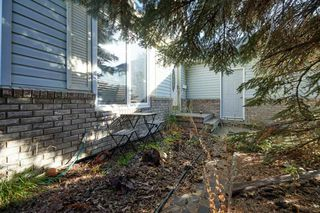 Photo 31: 15235 85 Street in Edmonton: Zone 02 House for sale : MLS®# E4217252