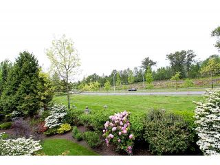"Photo 19: 128 13888 70TH Avenue in Surrey: East Newton Townhouse for sale in ""Chelsea Gardens"" : MLS®# F1440954"