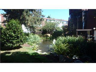 "Photo 17: 126 8880 NO 1 Road in Richmond: Boyd Park Condo for sale in ""APPLE GREENE"" : MLS®# V1137337"